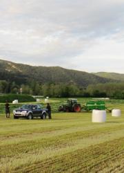 Terçera imatge de la secció Serveis agrícoles