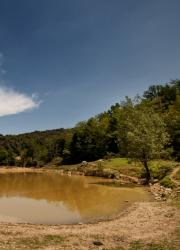 Primera imatge de la secció Aigua